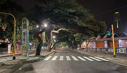 avenida-0.jpg