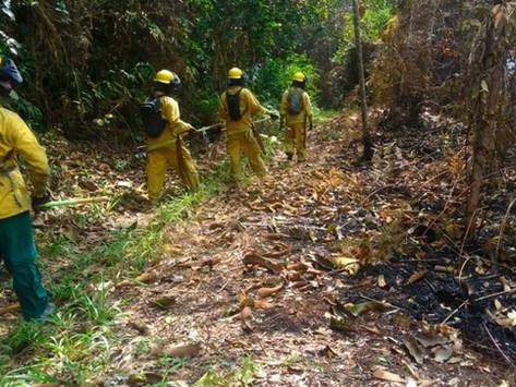 Cundinamarca y Boyacá en alerta por incendios forestales