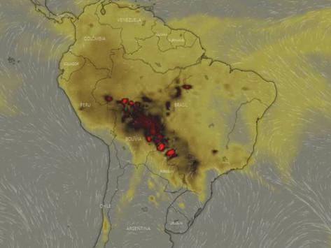 Los efectos que dejarán en el planeta los incendios en la Amazonía
