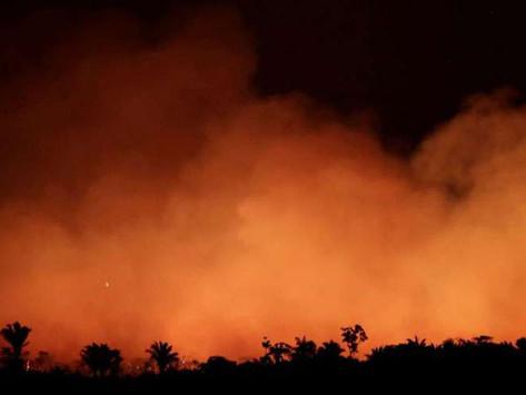 Papa Francisco está preocupado por los incendios en la Amazonia