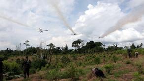 Posible regreso de la aspersión aérea con glifosato a San José del Guaviare