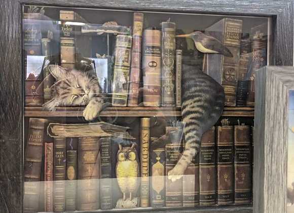 Library Kitty 3D Wall Art