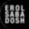 erol logo circle.png