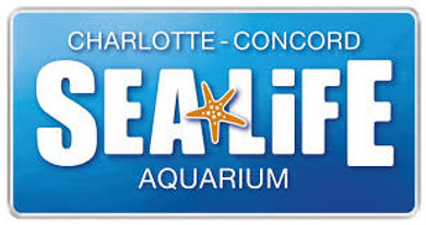 Sea life aquarium.jpg