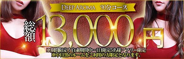 プレジール 13000円ポッキリ.jpg