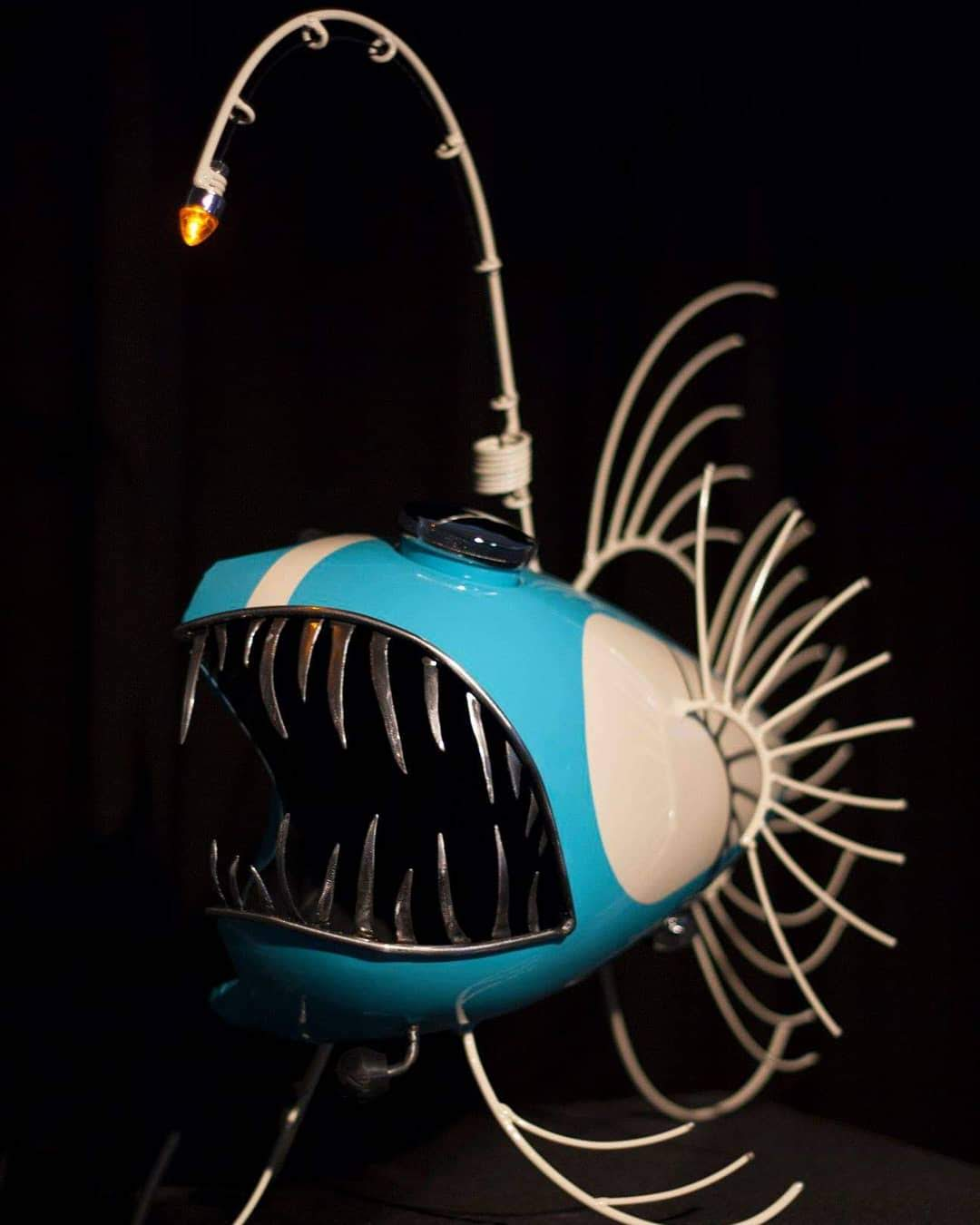 Blue Anglerfish