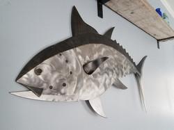 """36"""" Bluefin Tuna"""