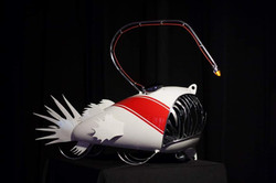 Red Anglerfish