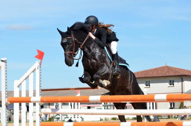 AGCM - Sanzione di 450mila euro alla Federazione Italiana Sport Equestri (FISE)