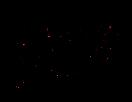 Sara Handwritten Logo BLACK-LR.png