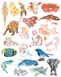Watercolour animals ombre illustration