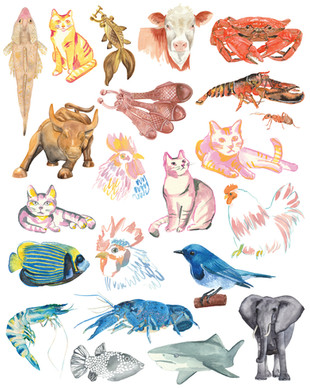 Watercolour animals ombre illustration