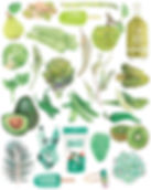 green watercolour fruits and vegetables food art