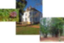 montage 2.jpg
