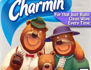 Bear Bottom: Making Sense of Charmin