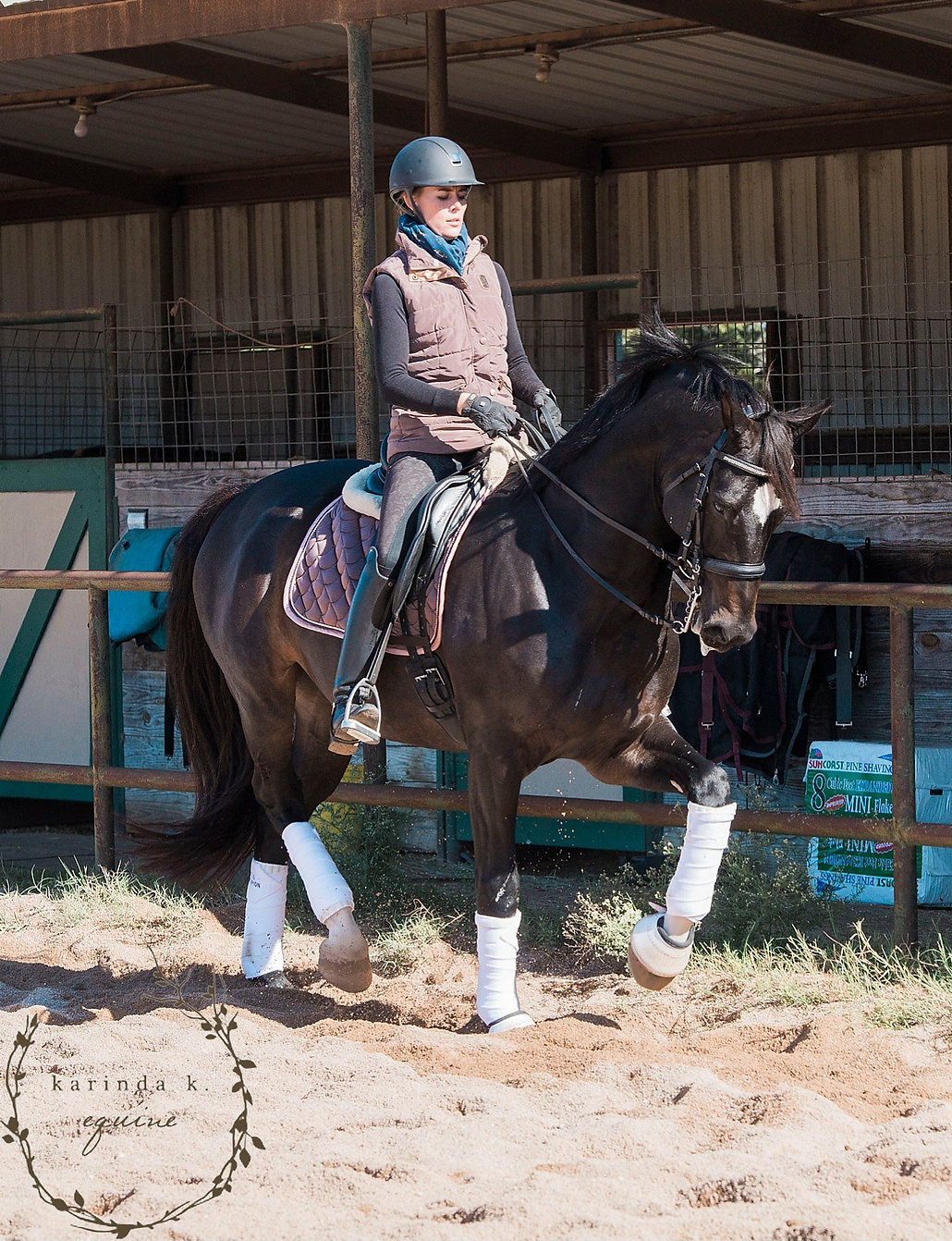 Dressage training in Dripping Springs