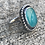 Thumbnail: Gem Amazonite and Oxidized Fine/Sterling Silver Ring (size 5.75)