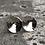 Thumbnail: Sterling Silver Swirl Post Earrings