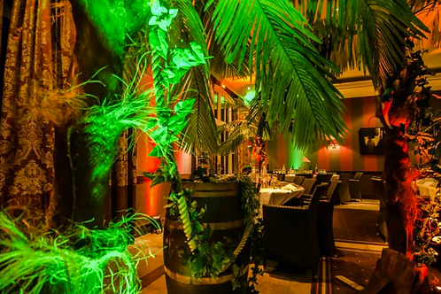 Package Décoration Jungle