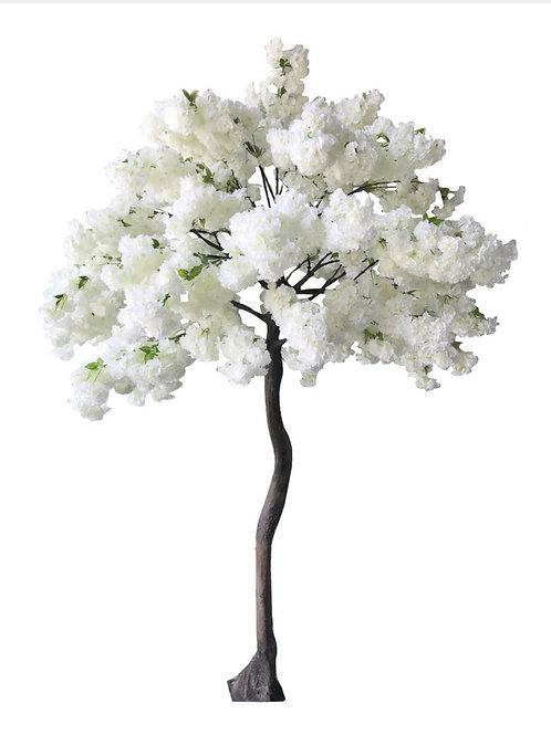 Arbre de cerisier blanc 270cm