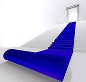 tapis-bleu-roi-location-fonce-profond-mo