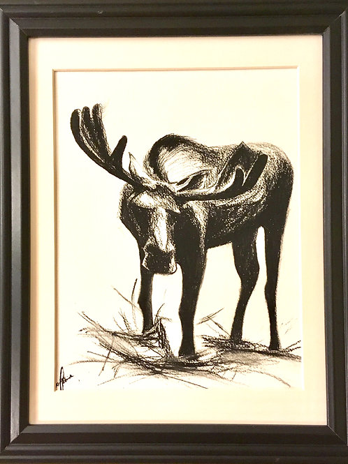 """""""Spruce Moose"""" ~8.5"""" x 10.5"""" Original charcoal drawing on paper"""