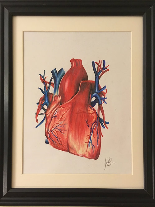 """""""This Little Heart of Mine"""" ~8.5"""" x 10"""" ink and coloured lead on paper"""