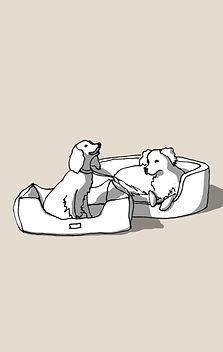 dog_sitting.jpg