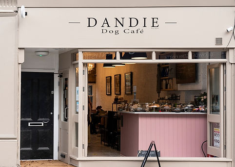 dandie_dog_cafe_021_edited.jpg