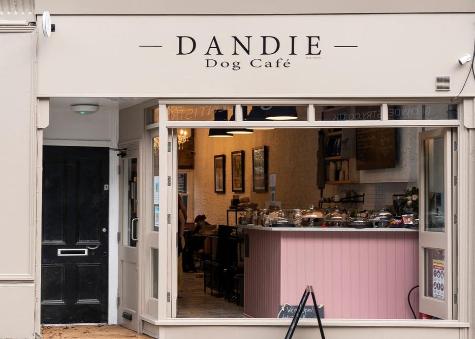 dandie_dog_cafe_021_edited.jpg