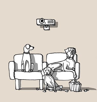 cinema_dogs.jpg