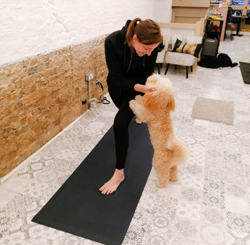 Yoga Pic Insta.jpg