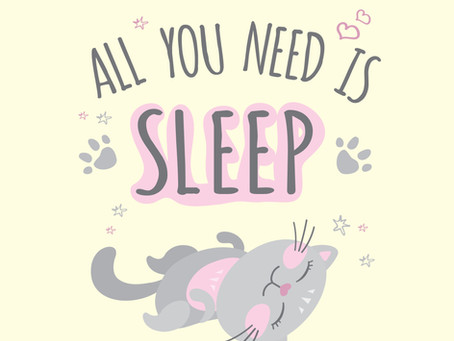 How to Improve Your Sleep Quality
