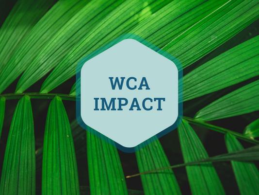 WCA Newsletter (July 2020)