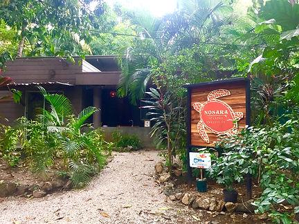 Nosara Spanish Institute in Nosara, Costa Rica