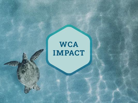 WCA Newsletter (December 2020)