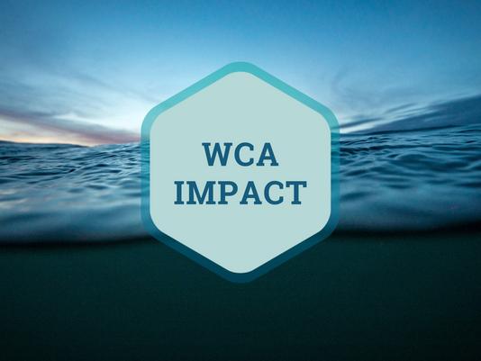 WCA Newsletter (August 2021)
