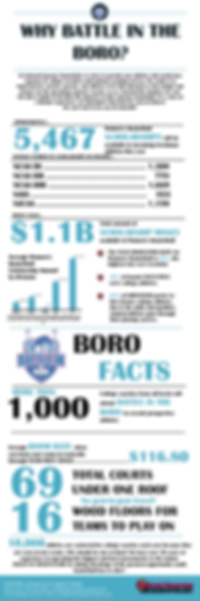 boro infographic 10,000.png