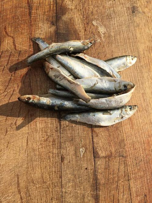 Henley Raw Dog Food, Whole Oily Fish (sprats) 1KG