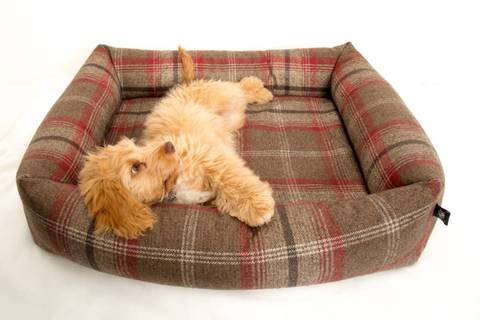 Memory Foam Square Chunky Dog Bed - Balmoral Plaid