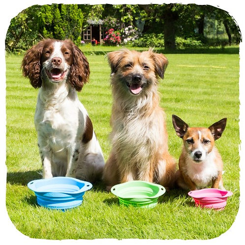BecoPets Collapsible Travel Bowl