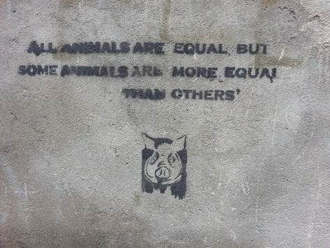 'All animals are equal': the relationship between the Cummings row and public trust in democracy