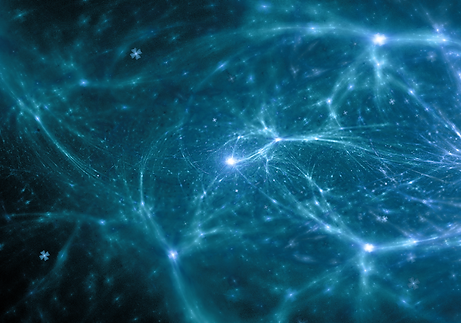 neurons-bright-background 2.png