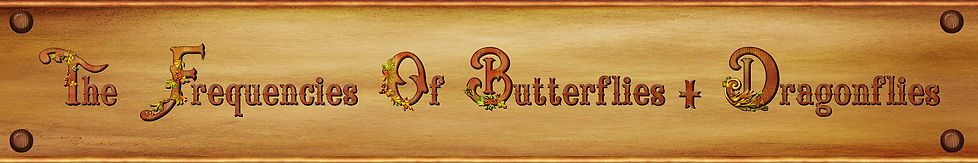 Insects-Butter-Dragon-Flies-Scroll.jpg