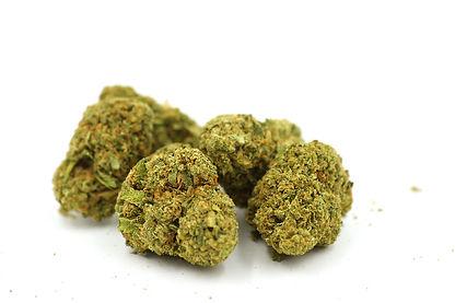 marijuana-bright buds-white.jpg
