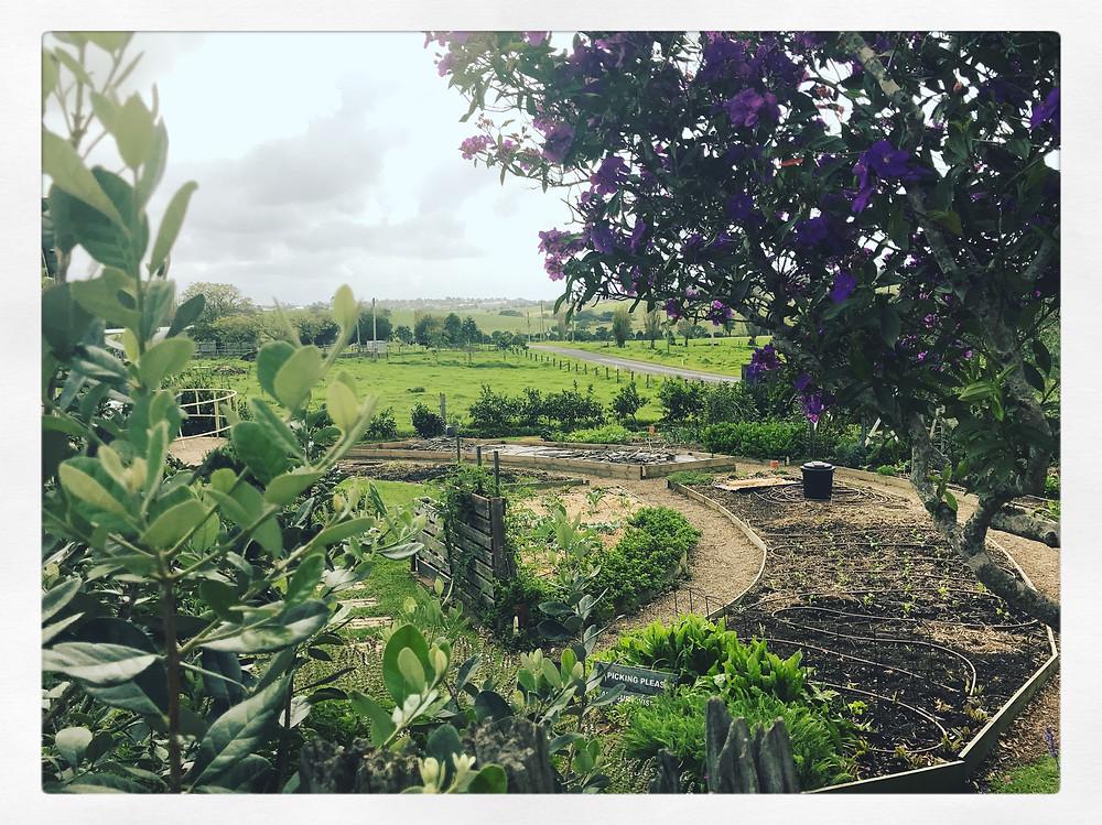 clovar-creative-south-coast-nsw-roadtrip-milkhaus-milton-garden