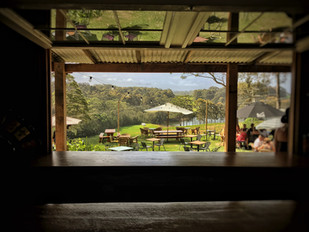 Tilba Valley winery and ale house