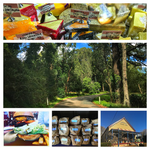 Road trip guide to: Robertson and Burrawang | NSW Southern Highlands