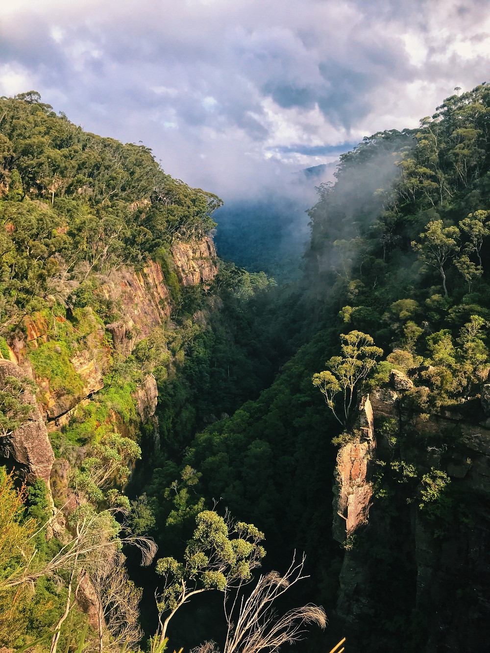 clovar-creative-kangaloon-southern-highlands-NSW-what-to-do-carrington-falls-views