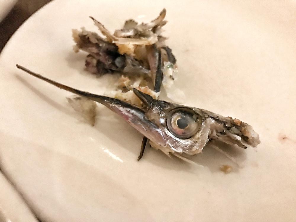 clovar-creative-saint-peter-paddington-fish-heads